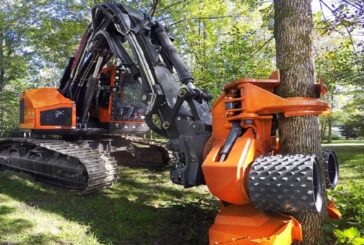 Important Tips To Work Safely With Forestry Tools And Equipment